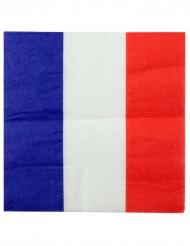 20 Serviettes en papier France 33 x 33 cm