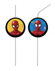 6 Pailles médaillon Spiderman™