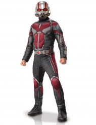 Déguisement luxe Ant-man™ adulte