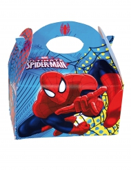 Boîte en carton Spiderman™ 16 x 10,5 x 16 cm