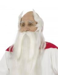 Perruque et barbe druide Panoramix™ - Astérix et Obélix™
