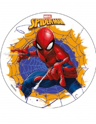 Disque en amidon Spiderman™ 18,5 cm