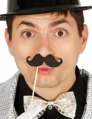 Accessoires photobooth 6 moustaches noir avec bâton 10 cm