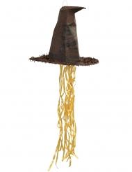 Piñata choixpeau Harry Potter™ 45 cm