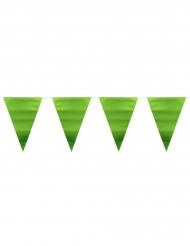 Guirlande fanions vert métallique 6 m