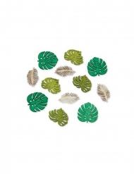 12 Feuilles tropicales en bois dégradé vert et cérusé 4 cm