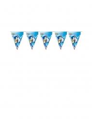 Guirlande fanions en carton Sonic™ 3 m x 30 cm