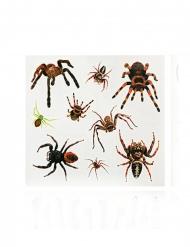 Faux tatouages araignées