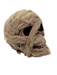 Tête de mort momifiée 20 x 16 cm