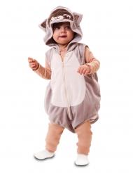 Déguisement raton laveur bébé