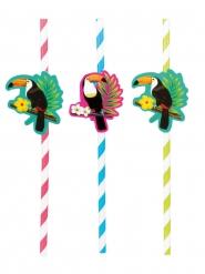6 Pailles en carton toucan 20 cm