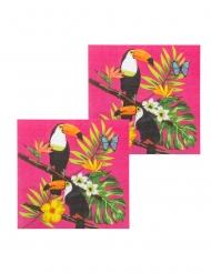 12 Serviettes en papier toucan fuschia 33 x 33 cm