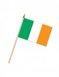 Drapeau irlandais 10 x 15 cm