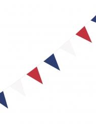 Guirlande à fanions drapeaux supporter France 3 m