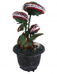 Décoration animée, lumineuse et sonore plante 36 cm