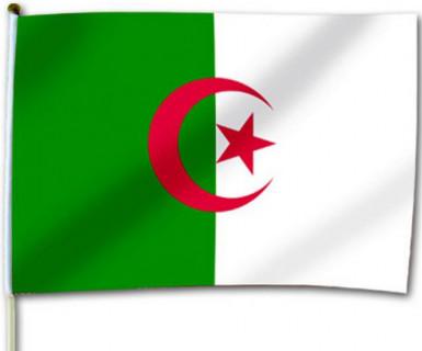 Drapeau de supporter Algérie 30x46cm