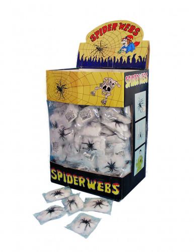 Petite toile et araignée d'Halloween-1