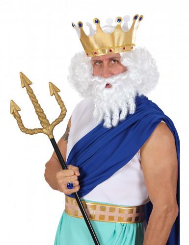 Perruque blanche dieu de la mer homme