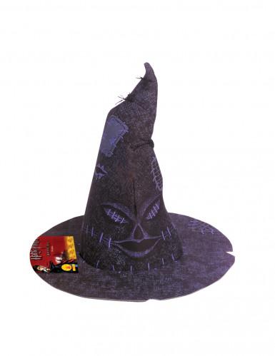Choixpeau magique Harry Potter™