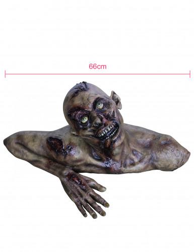 Buste zombietaille réelle Halloween en décor-1