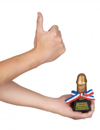 Trophée zizi d'or-1