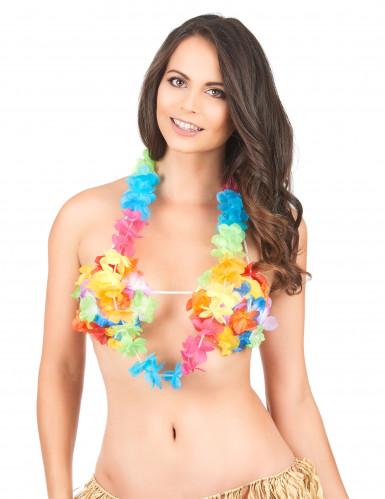 Collier Hawaï multicolore adulte-1