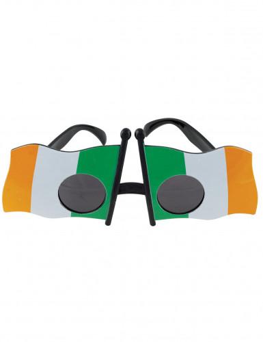 Lunettes drapeau de l'Irlande adulte