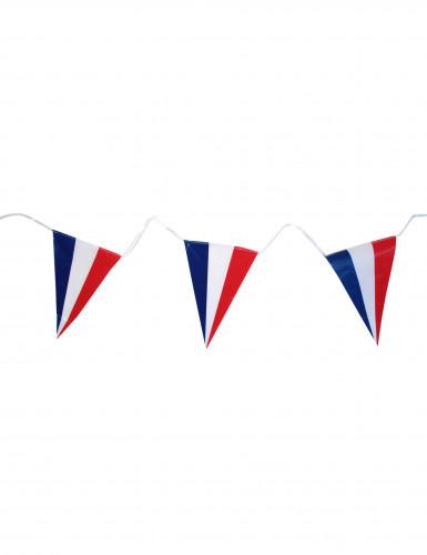 Guirlande drapeaux français