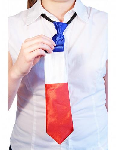 Cravate France-1