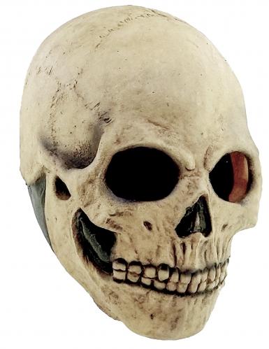 Masque tête de mort adulte Halloween