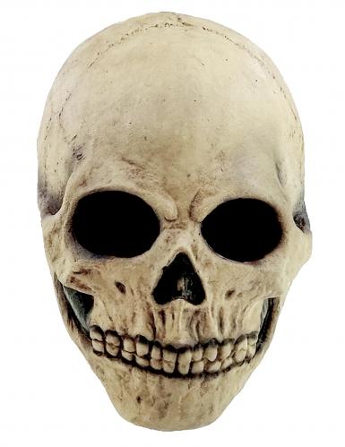 Masque tête de mort adulte Halloween-1