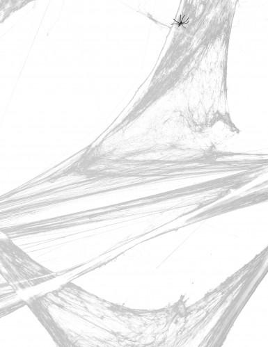 Décoration toile d'araignée blanche avec araignées 20 g Halloween-1