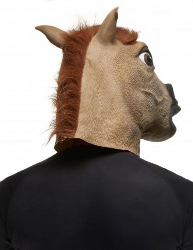Masque cheval marron adulte -1