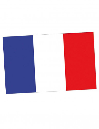 Drapeau supporter France 150 x 90 cm