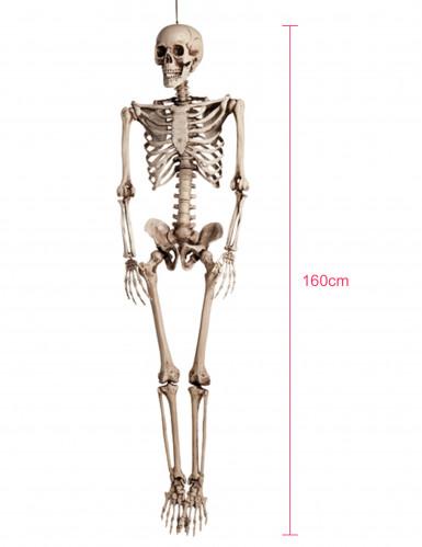 Décoration à suspendre squelette Halloween 160 cm-3