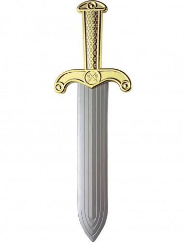 Glaive romain 37 cm en plastique-1