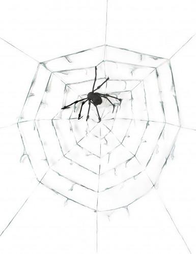 Toile d'araignée géante avec araignée 2.90m Halloween