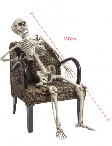 Squelette à poser 160 cm Halloween-1