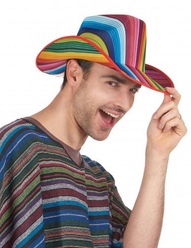 Chapeau cowboy multicolore rayé adulte-1