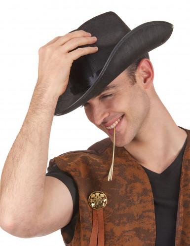 Chapeau cowboy noir pour adulte-1
