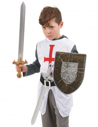 Kit bouclier et 2 épées en plastique pour Enfant-2