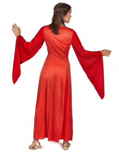 Déguisement médiéval rouge effet velours femme-2