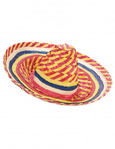 Sombrero mexicain multicolor adulte