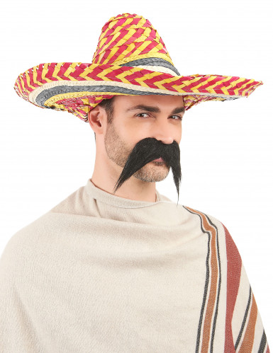 Sombrero mexicain multicolor adulte-1