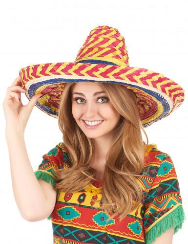 Sombrero mexicain multicolore adulte-1