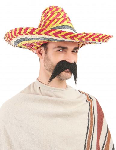 Sombrero mexicain multicolore adulte-2