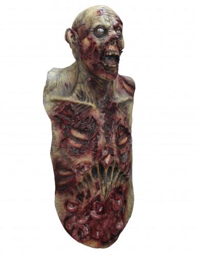 Masque intégral et buste zombie adulte