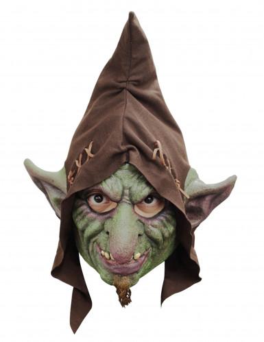 Masque intégral gobelin adulte Halloween