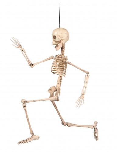 Décoration articulée squelette 50 cm Halloween-2