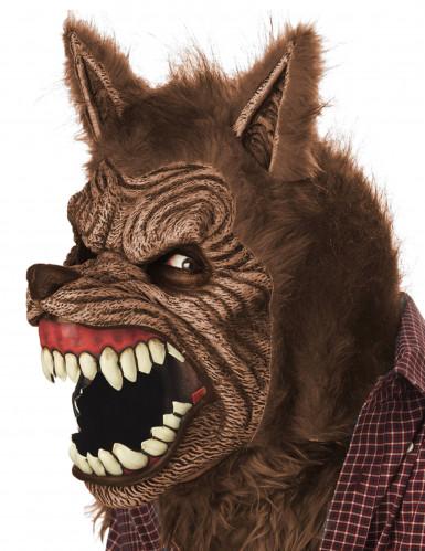 Masque animé loup garou adulte-1
